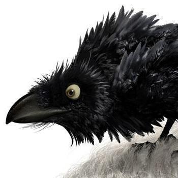 Mister Crow